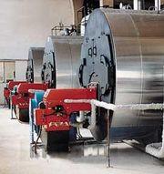 温州华贸皮革厂(3台)WNS4-1.25-Q